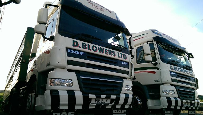 Image Courtesy of D. Blowers Ltd